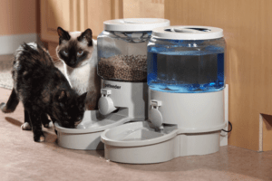 TD Design Automatic Cat Feeder