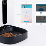 Safevant <br /> Automatic Pet Feeder