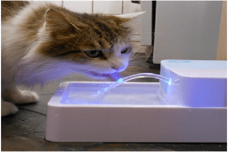 LED + UV Sterilization Automatic Pet Water Fountain