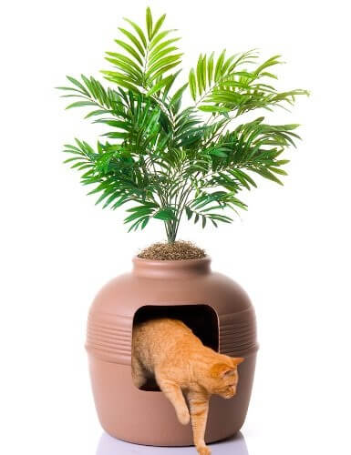 Pet stuff Company Hidden Cat Litter Box