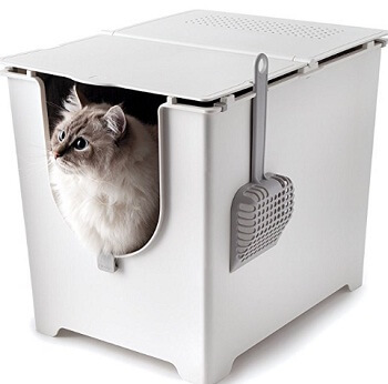 Modkat flip cat litter box