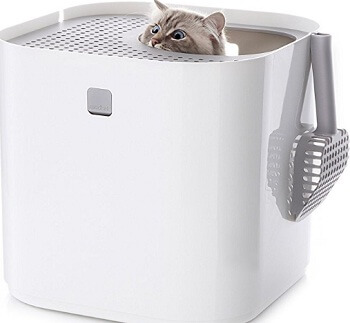 Modkat litter box, top entry
