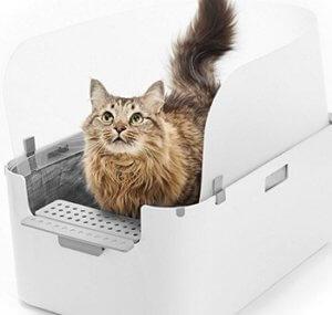 Modkat open tray litter box