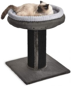 Basics Cat Bed